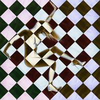Survive Nude Woman Checkered 3
