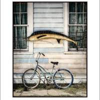 """Fish and Bike 16x20"" by curtisstaiger"
