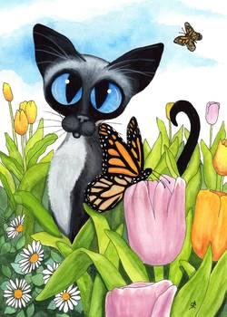 Siamese Summer Cat by AmyLyn Bihrle