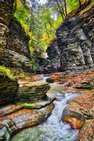 Fall in the Gorge at Watkins Glen State Park
