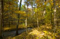 Shale Hollow in Autumn, Lewis Center, Ohio
