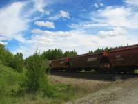 Freight Train in the Country