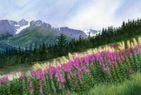 Glacier Valley Fireweed
