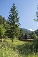 Romania Carpathian mountain holiday chalet