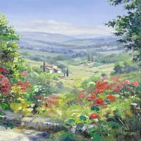 Summer landscape in the Provence