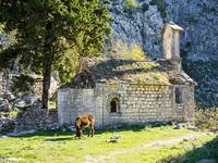 Ruins of the Church