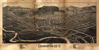 Aerial View of Oneonta, New York (1884)