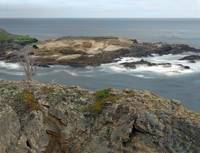 Lobos Headlands Cove_p-6k by WorldWide Archive