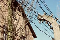 Wire Fence of Auschwitz