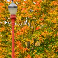 Fall Lamppost Art Prints & Posters by Kirt Tisdale