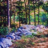 """New-Hampshire-forest-Large"" by SherylKaras"