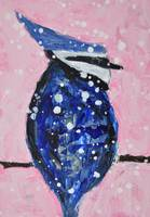 Bluejay in a snowstorm