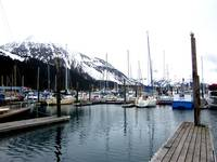 Small Boat Harbor in Seward, AK