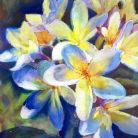 Plumeria Blue yellow Water Color Art Prints & Posters by RD Riccoboni