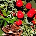 Plants gallery