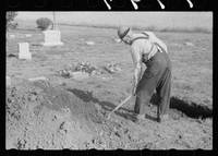 Grave digger at work, Woodbine, Iowa, 1940. Photo