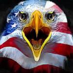 American Eagle art by Edward Vela Prints & Posters