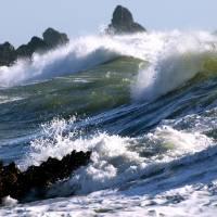 Pacific Coast Sculpting Tool by Richard Thomas