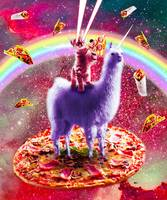 Laser Eyes Outer Space Cat Riding On Llama Unicorn