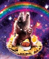 Space Cat Llama Sloth Riding Nachos