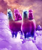 Kitty Cat Riding On Rainbow Llama In Space