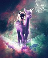 Funny Space Pug Riding On Alpaca Unicorn