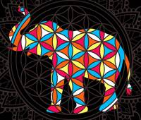 Elephant Flower Of Life