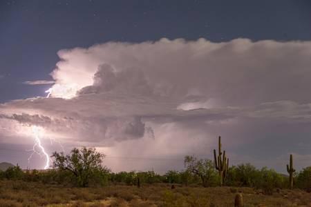 Arizona Power