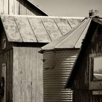 Four Farm Buildings Sepia by Karen Adams