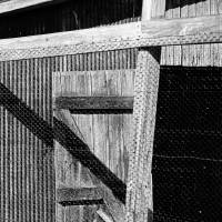 Shed Shadows Black and White by Karen Adams