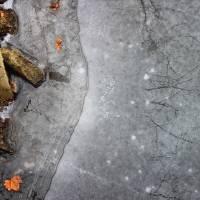 Frozen Bank by Karen Adams