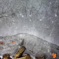 Frozen Skies by Karen Adams