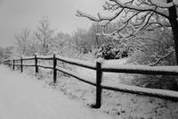 Snow Capped Split Rail