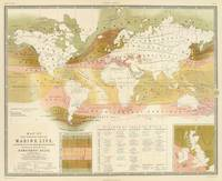 Vintage World Marine Life Map (1854)