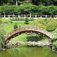 Japanese Garden Bridge by Eileen Ringwald
