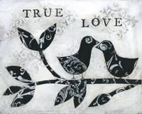 Black and White Birds True Love