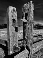 Split Rail Fence II