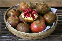 Lijiang pomegranate