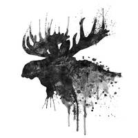 Moose Head Silhouette B&W