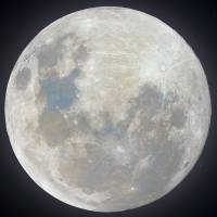 Super Snow Moon (Up Close) by Andrew McCarthy