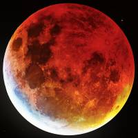 Blood Moon 2019 by Andrew McCarthy