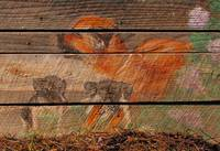 Barn Art Dog and Pups