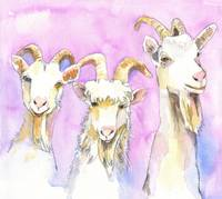 3 Billy Goats Gruff, Goat Painting