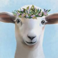 """ewe"" by tammyleebradley"