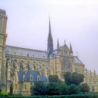 Notre Dame Art Prints & Posters by Joao Ponces de Carvalho
