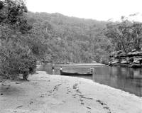 In Gibberagong Creek, from Big Wattle Point Statio