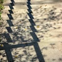 Step Shadows 1 by Karen Adams