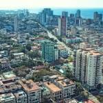 Above Havana by Kim Wilson