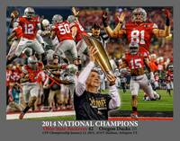 Ohio State Buckeyes z NC Art1 2014 GRAY 11x14