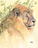 Original gouache painting lion portrait